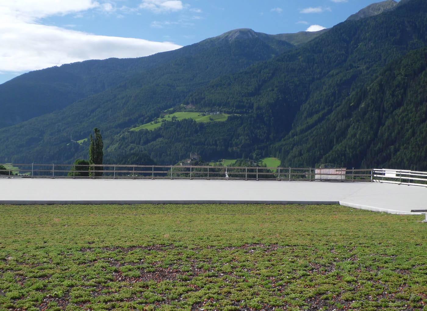 tetto-verde-vipiteno-agrileca