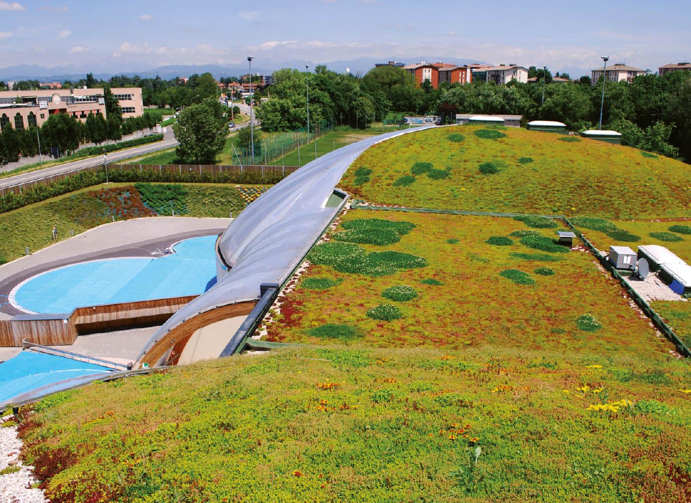 tetto-verde-lecagreen-AE12