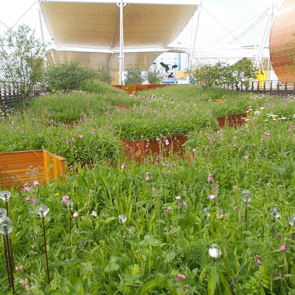 Urban landscaping, Urban planting, Gardens  Corpo
